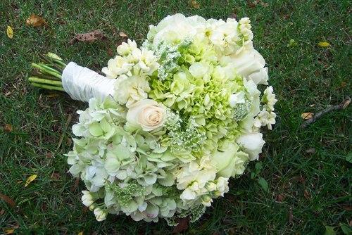 hoa cưới cầm tay cẩm tú cầu trắng