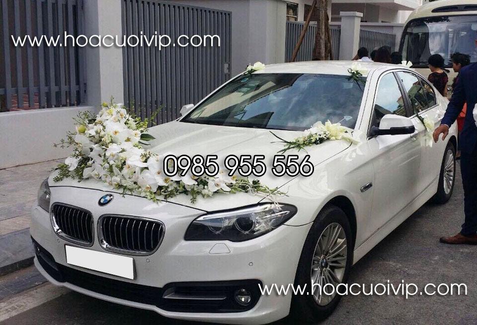 thuê xe cưới bmw 520i 2017 màu trắng