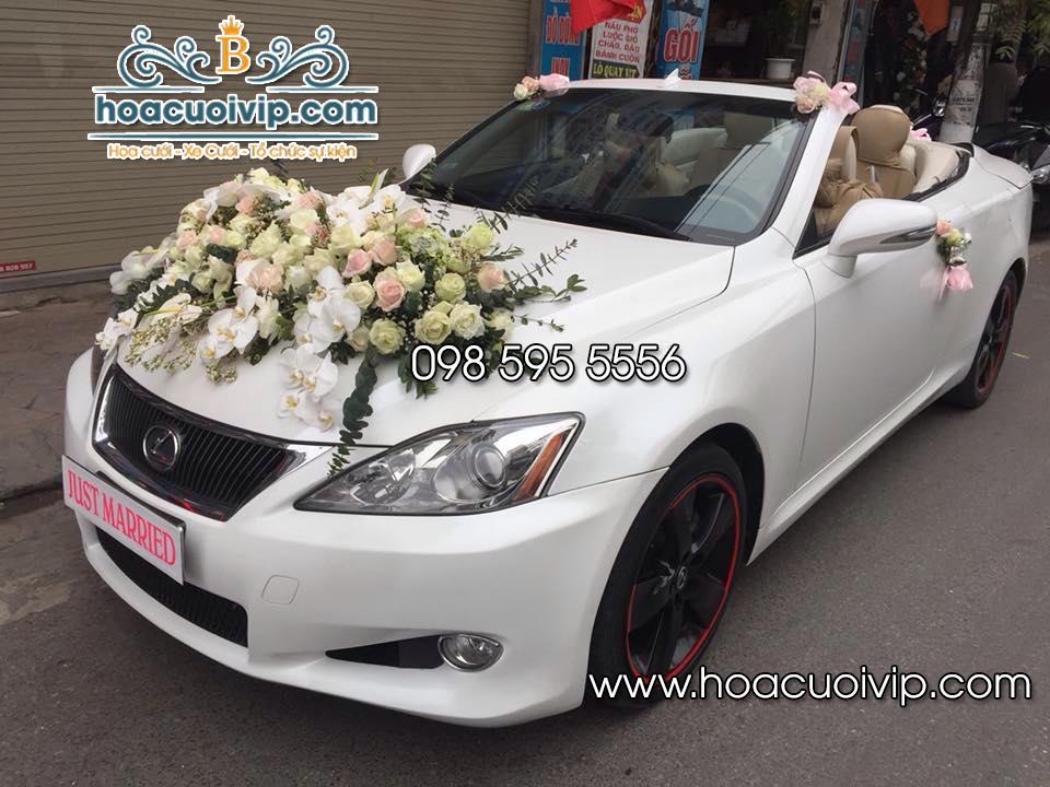 Thuê xe cưới Lexus IS250 mui trần